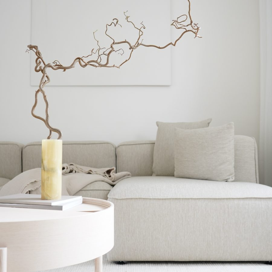 design sofa with chaise lounge